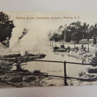 NZ Postcard Malfroy Geyser Rotorua