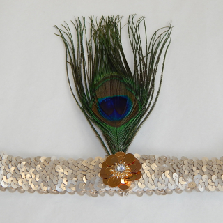 Feather and sequinned headband
