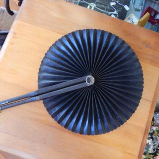 Victorian era Hand Fan