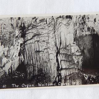 NZ Photo postcard The Organ, Waitomo Caves