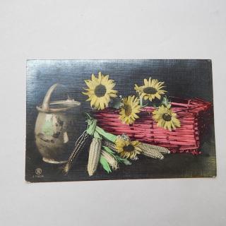 1908 Postcard with Taihape NZ post mark